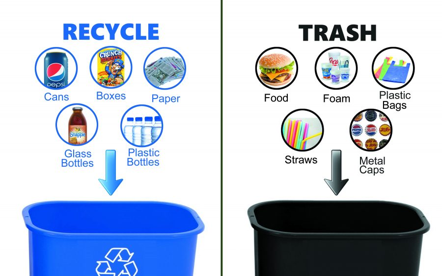 Recycling+at+Augustana