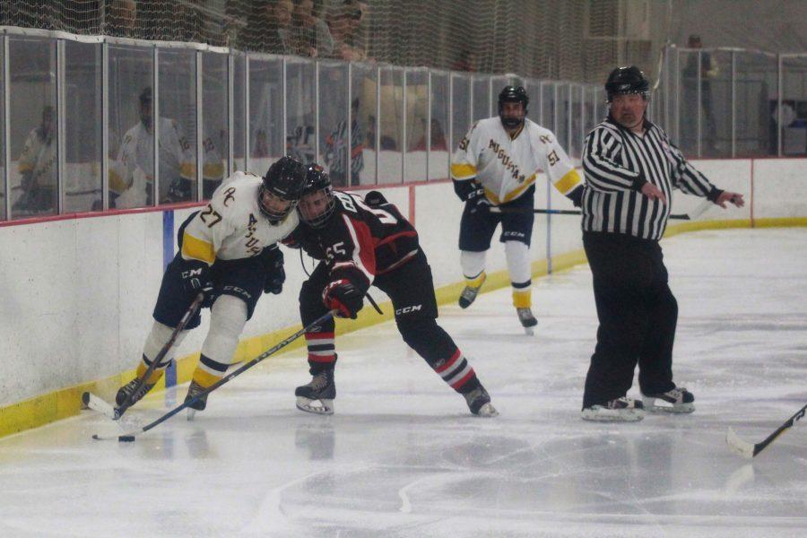 Hockey1_LG