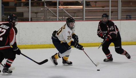 Augustanas Mike Fournier chases after the puck. Photo by Lu Gerdemann.