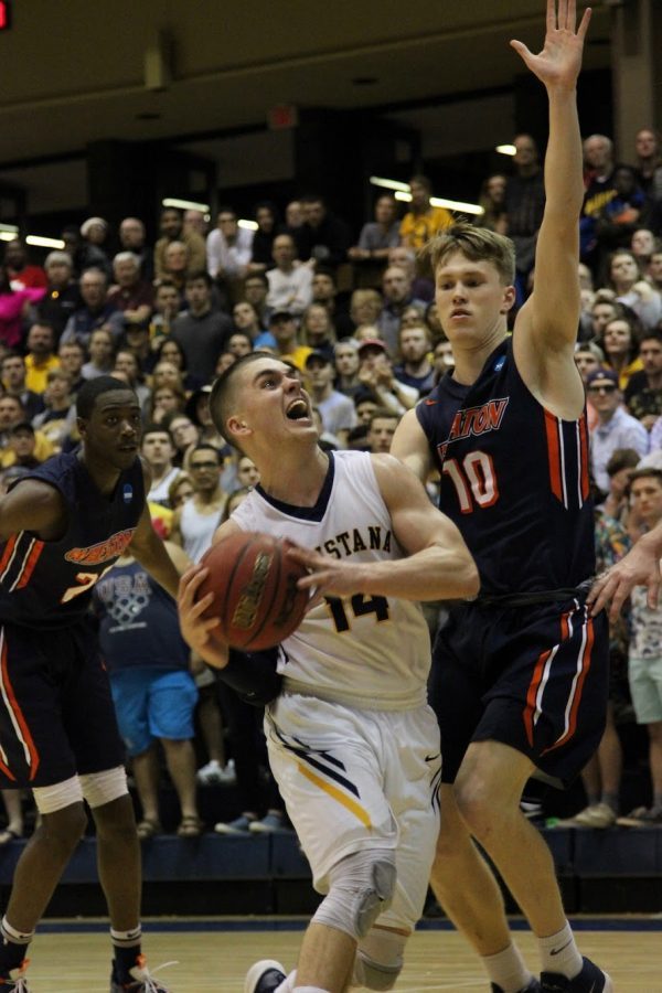 Vikings end NCAA run after loss to Wheaton in Sweet 16