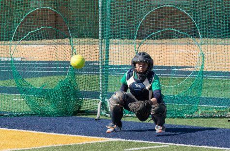 Softball strives for success